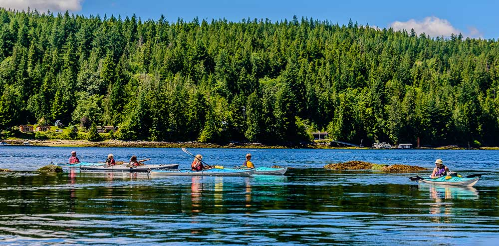 Kayak our inlets