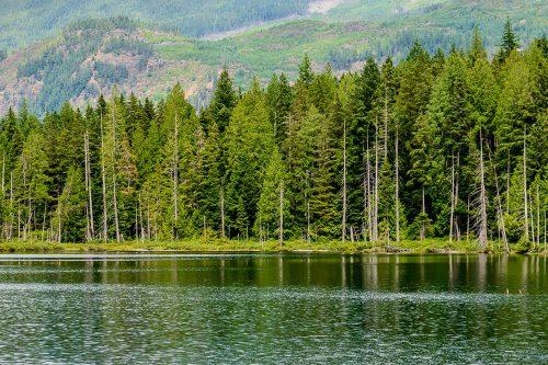 Local Lakes Egmont